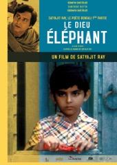 film-le-dieu-elephant7